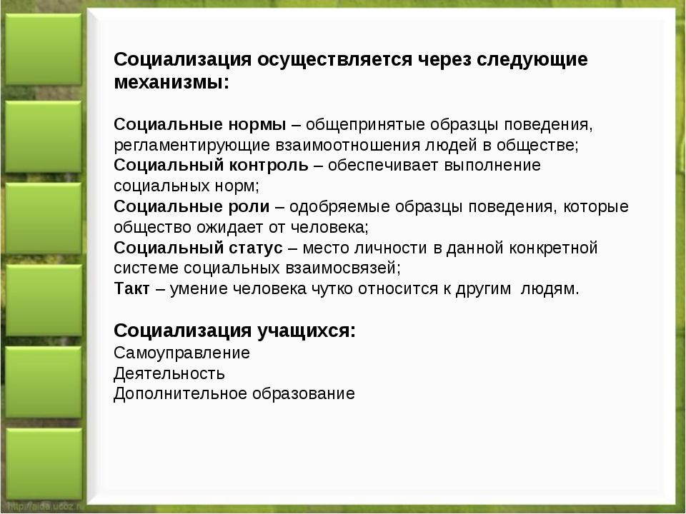 Социализация осуществляется через следующие механизмы: Социальные нормы – общ...