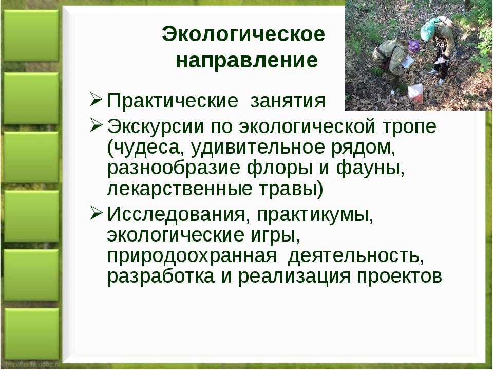 Экологическое направление Практические занятия Экскурсии по экологической тро...