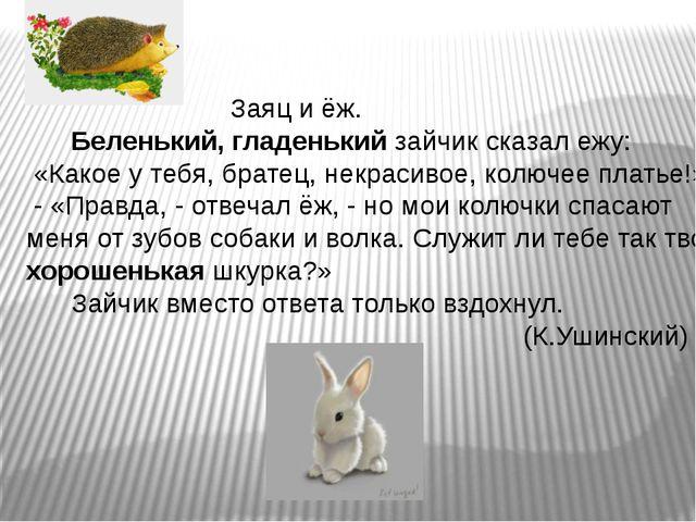 Заяц и ёж. Беленький, гладенький зайчик сказал ежу: «Какое у тебя, братец, н...