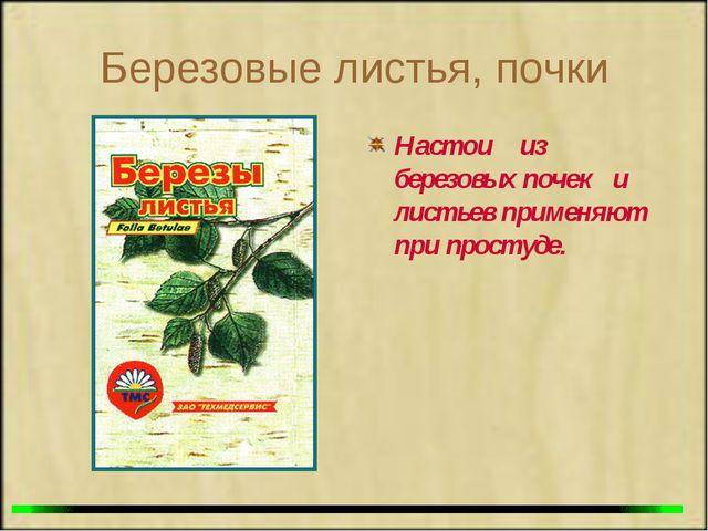 Березовые листья, почки Настои из березовых почек и листьев применяют при про...