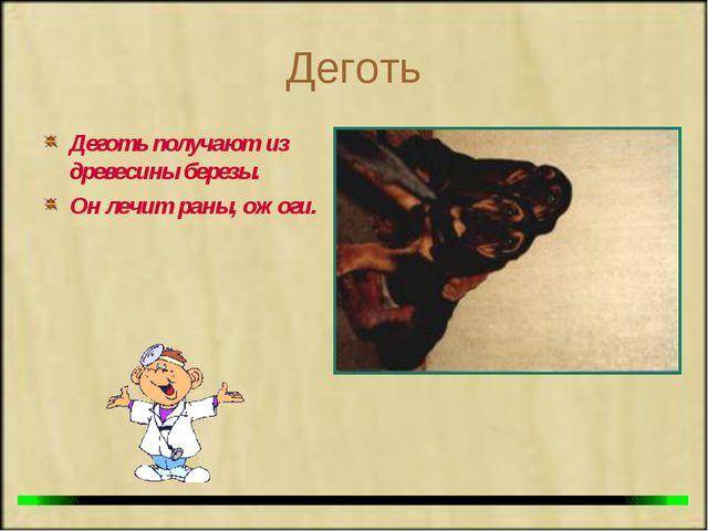 Деготь Деготь получают из древесины березы. Он лечит раны, ожоги.