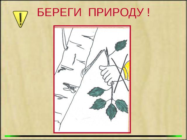 БЕРЕГИ ПРИРОДУ !