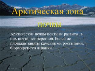 Арктические почвы почти не развиты, в них почти нет перегноя. Большие площад