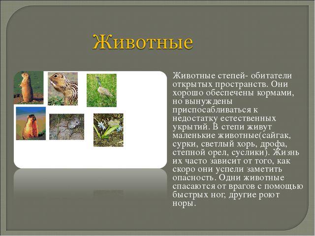 Животные степей- обитатели открытых пространств. Они хорошо обеспечены корма...