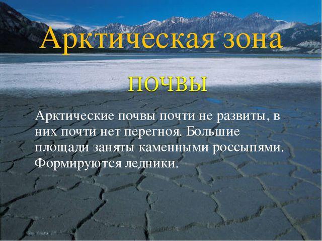 Арктические почвы почти не развиты, в них почти нет перегноя. Большие площад...
