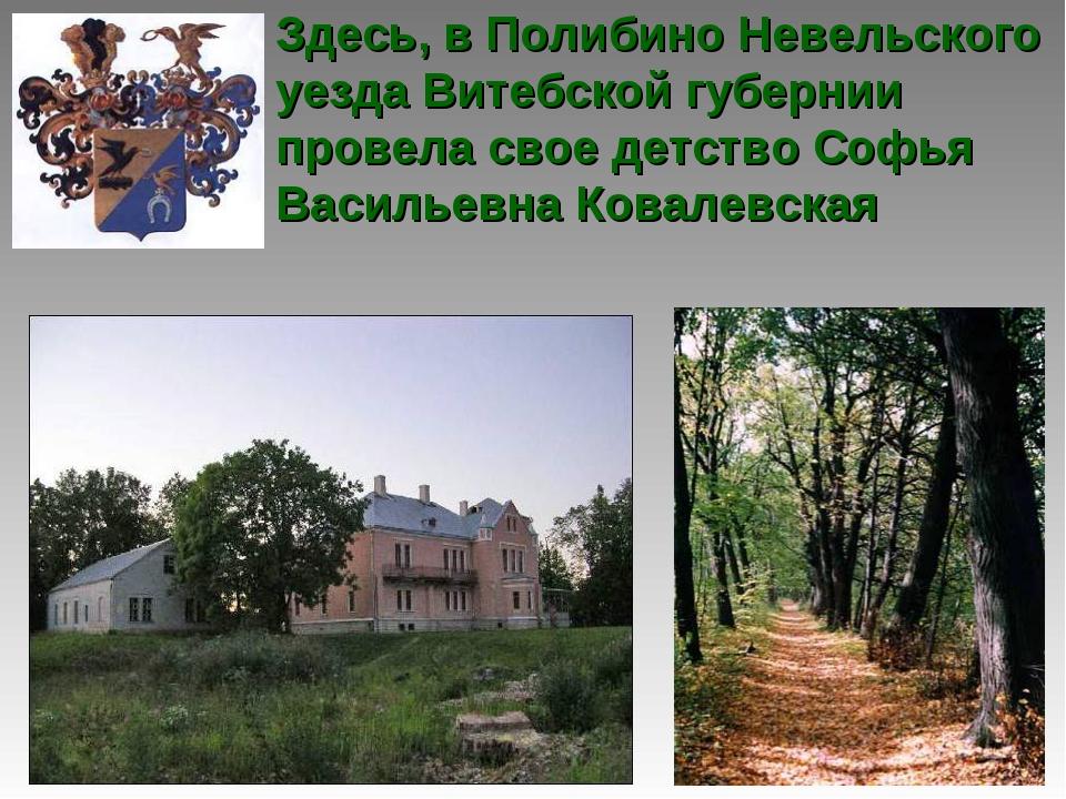 Здесь, в Полибино Невельского уезда Витебской губернии провела свое детство С...