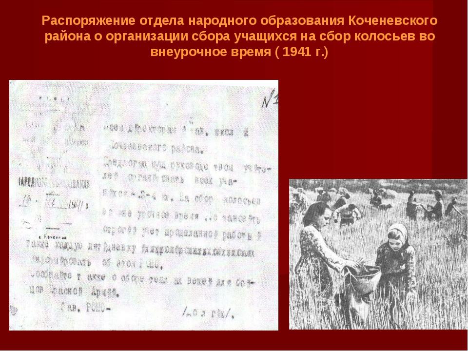 Распоряжение отдела народного образования Коченевского района о организации с...