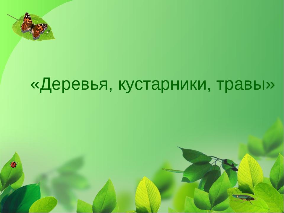 «Деревья, кустарники, травы»
