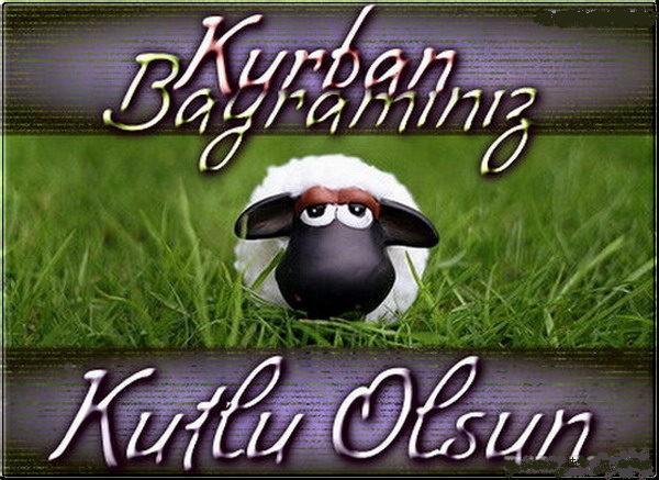 Открытка на турецком поздравление курбан, диплома картинки