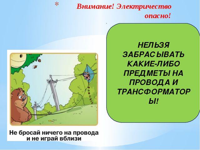 Внимание! Электричество опасно! НЕЛЬЗЯ ЗАБРАСЫВАТЬ КАКИЕ-ЛИБО ПРЕДМЕТЫ НА ПР...
