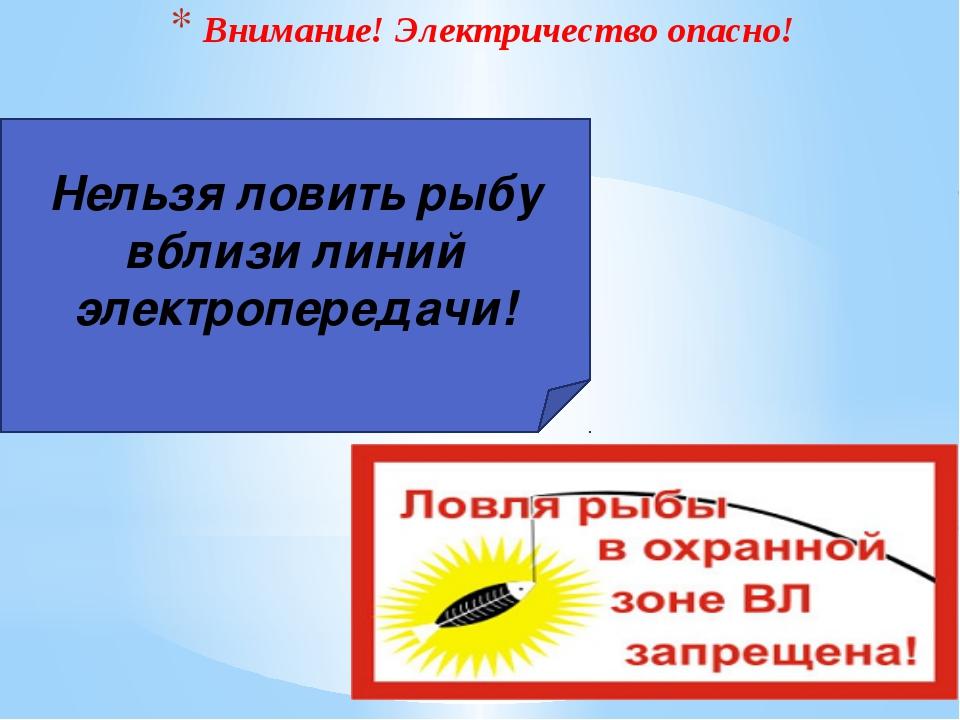 Внимание! Электричество опасно! Нельзя ловить рыбу вблизи линий электропереда...