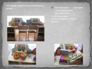 Организация сенсорно-стимулирующего пространства. 2) Организация сенсомоторн