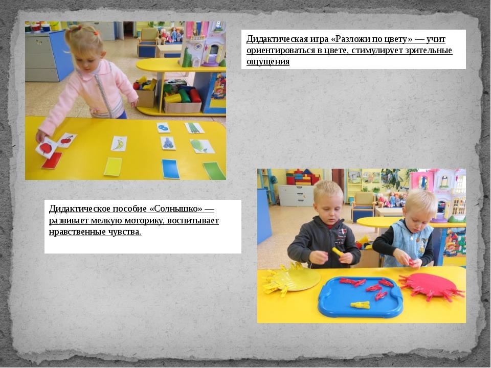 Дидактическая игра «Разложи по цвету» — учит ориентироваться в цвете, стимул...