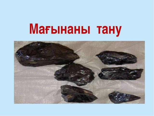 Мағынаны тану