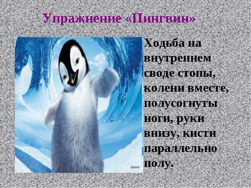 Упражнение «Пингвин» Ходьба на внутреннем своде стопы, колени вместе, полусо...