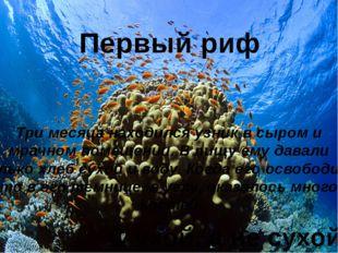 Первый риф Три месяца находился узник в сыром и мрачном помещении. В пищу ему