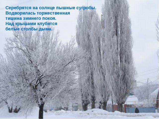 Серебрятся на солнце пышные сугробы. Водворилась торжественная тишина зимнего...