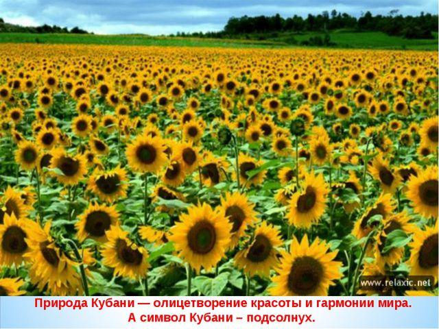 Природа Кубани — олицетворение красоты и гармонии мира. А символ Кубани – под...