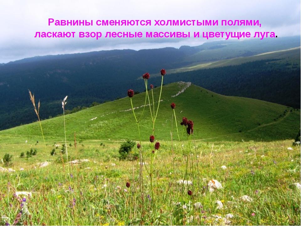 Равнины сменяются холмистыми полями, ласкают взор лесные массивы и цветущие л...