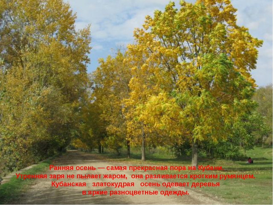 Ранняя осень — самая прекрасная пора на Кубани. Утренняя заря не пылает жаром...