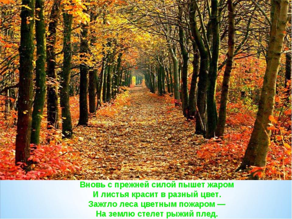 Вновь с прежней силой пышет жаром И листья красит в разный цвет. Зажгло леса...