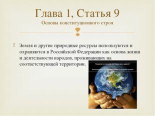 Земля и другие природные ресурсы используются и охраняются в Российской Феде