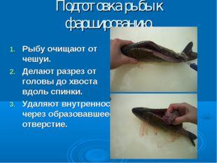 Подготовка рыбы к фаршированию. Рыбу очищают от чешуи. Делают разрез от голов