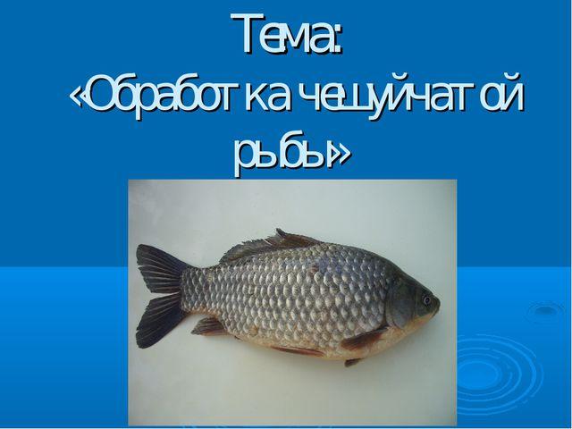 Презентация на тему Обработка чешуйчатой рыбы  Тема Обработка чешуйчатой рыбы