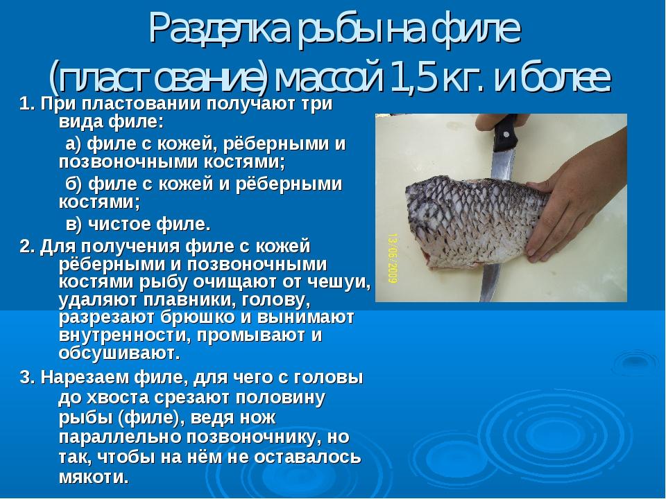 Разделка рыбы на филе (пластование) массой 1,5 кг. и более. 1. При пластовани...