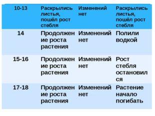 10-13 Раскрылисьлистья, пошёл рост стебля Изменений нет Раскрылисьлистья, пош