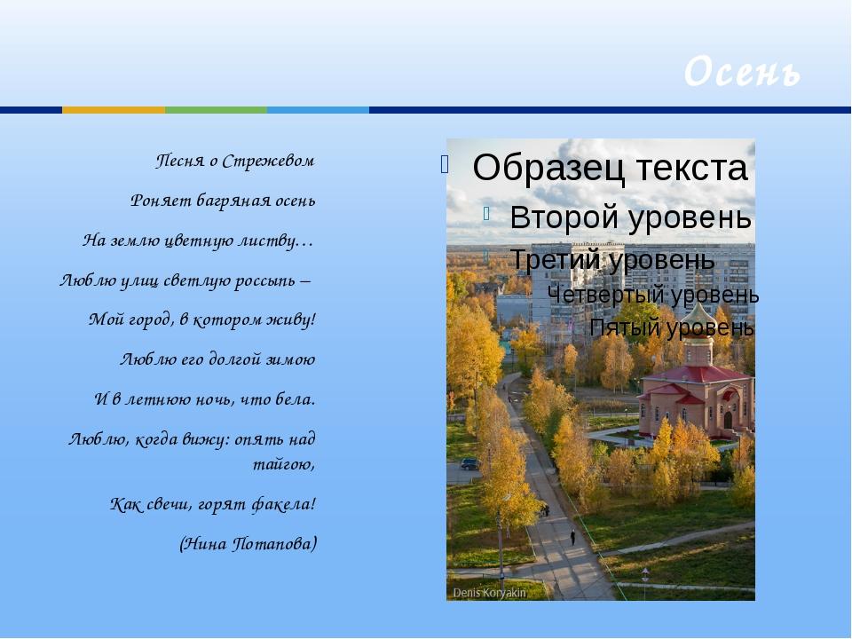 Осень Песня о Стрежевом Роняет багряная осень На землю цветную листву… Люблю...