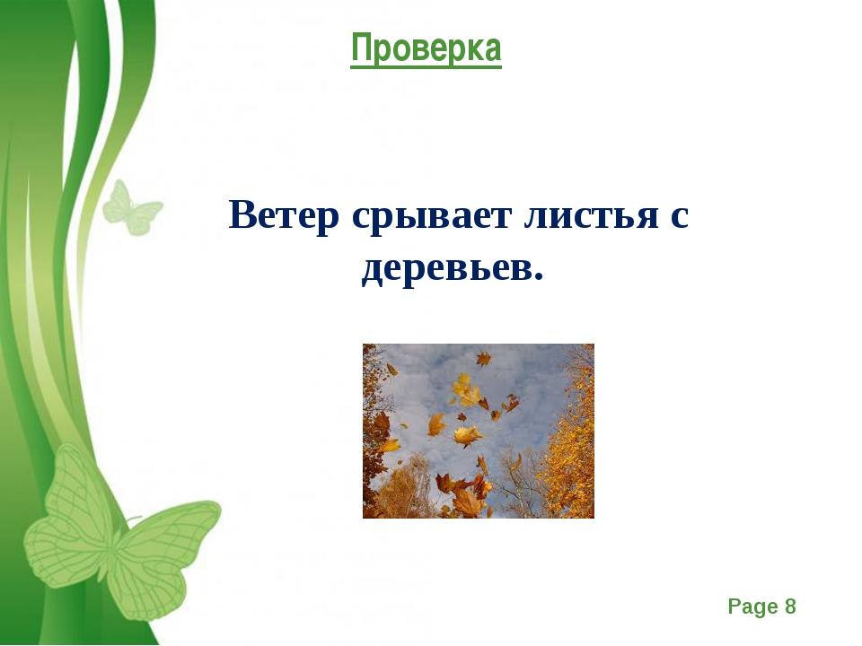 Проверка Ветер срывает листья с деревьев. Free Powerpoint Templates Page *