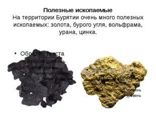 Полезные ископаемые На территории Бурятии очень много полезных ископаемых: зо