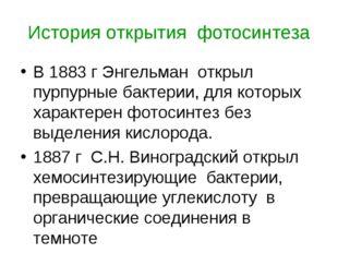 История открытия фотосинтеза В 1883 г Энгельман открыл пурпурные бактерии, дл
