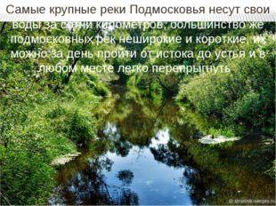 Самые крупные реки Подмосковья несут свои воды за сотни километров, большинст