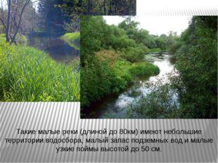 Такие малые реки (длиной до 80км) имеют небольшие территории водосбора, малый