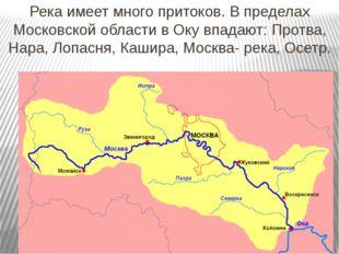 Река имеет много притоков. В пределах Московской области в Оку впадают: Протв