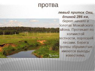 протва левый приток Оки, длиной 286 км, берет начало в болотах Можайского рай