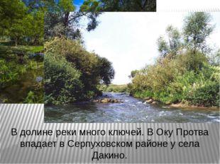 В долине реки много ключей. В Оку Протва впадает в Серпуховском районе у села