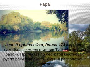 нара левый приток Оки, длина 173 км, исток находится южнее станции Тучково(Ру