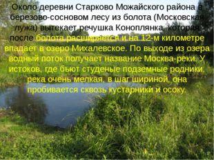 Около деревни Старково Можайского района в березово-сосновом лесу из болота (