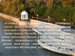 …И снова впереди возникают мосты - старинные и новые, чугунные и каменные. Це