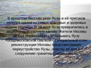 В прошлом бассейн реки Яузы и её притоков являлся одним из самых красивых и з