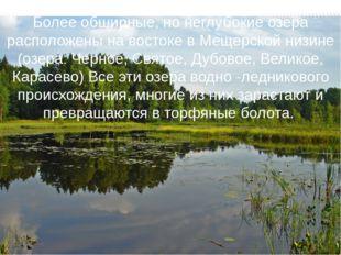 Более обширные, но неглубокие озера расположены на востоке в Мещерской низине