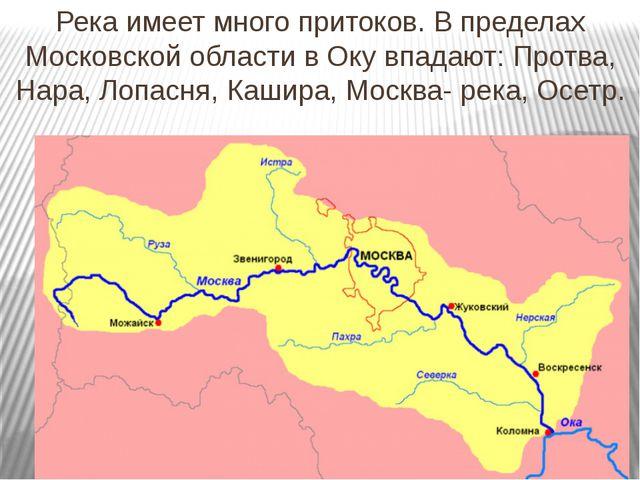 Река имеет много притоков. В пределах Московской области в Оку впадают: Протв...