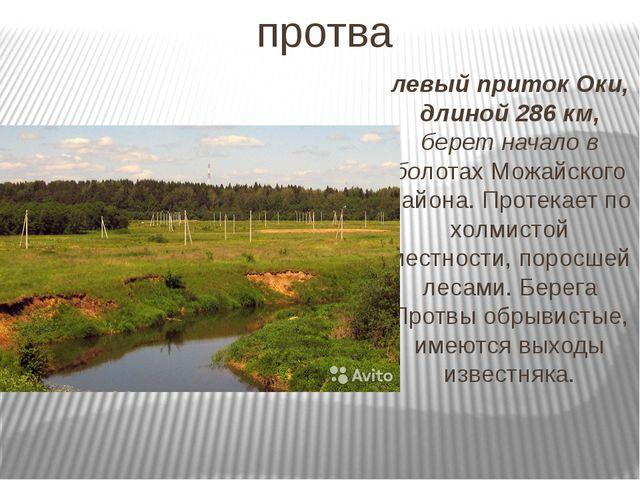протва левый приток Оки, длиной 286 км, берет начало в болотах Можайского рай...