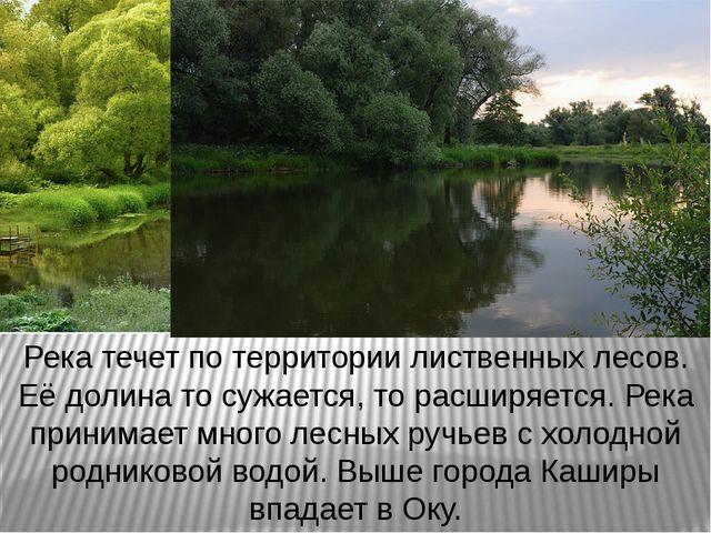 Река течет по территории лиственных лесов. Её долина то сужается, то расширяе...