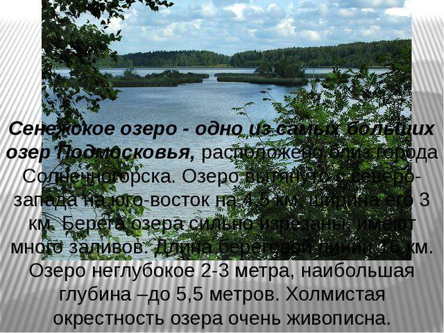 Сенежское озеро - одно из самых больших озер Подмосковья, расположено близ го...
