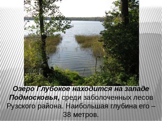 Озеро Глубокое находится на западе Подмосковья, среди заболоченных лесов Рузс...