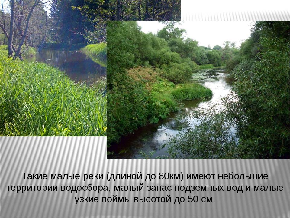 Такие малые реки (длиной до 80км) имеют небольшие территории водосбора, малый...